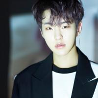 ホシ・HOSHI(SEVENTEEN・セブチ)を韓国語では?名前・本名ハングル表記